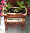 Pianoplanter