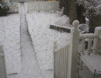 snowyard.jpg